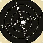 Zielscheibe (Ringescheibe) für Luftgewehrschießen